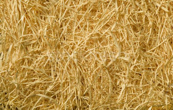 Amarelo palha materialismo textura Foto stock © Balefire9