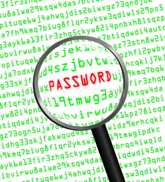 PASSWORD revealed in computer code through a magnifying glass Stock photo © Balefire9