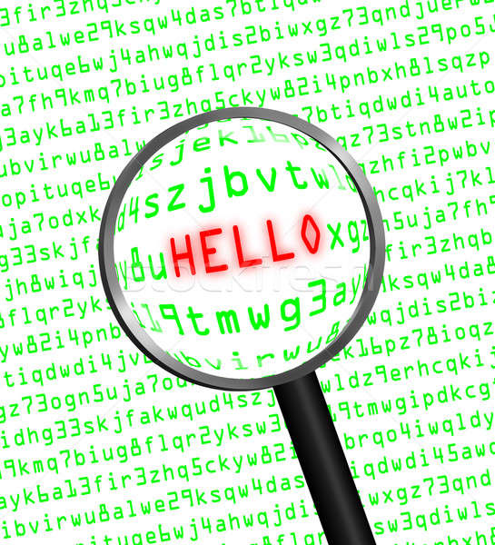 'HELLO' revealed in computer code through a magnifying glass Stock photo © Balefire9