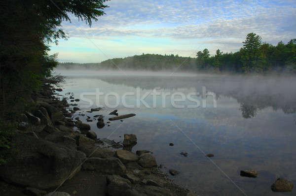 Köd emelkedő tó vadon kora reggel kilátás Stock fotó © Balefire9
