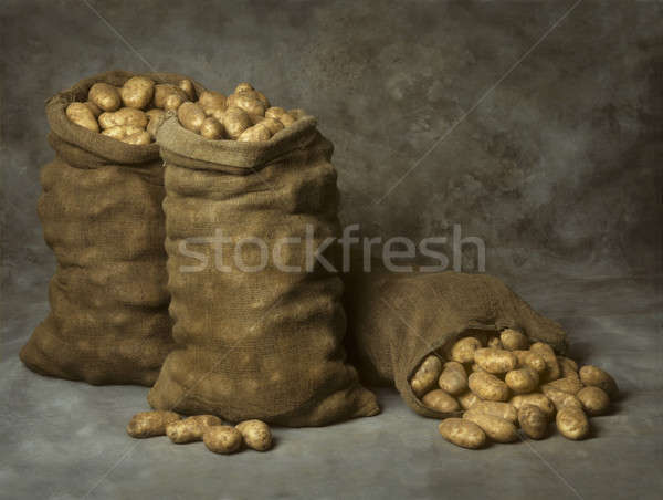 Burlap Sacks of Potatoes Stock photo © Balefire9