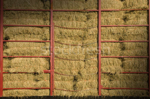 Hay bales piled within a cart Stock photo © Balefire9