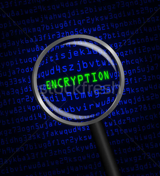 'ENCRYPTION' revealed in computer code through a magnifying glas Stock photo © Balefire9