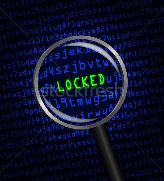 'LOCKED' revealed in computer code through a magnifying glass Stock photo © Balefire9