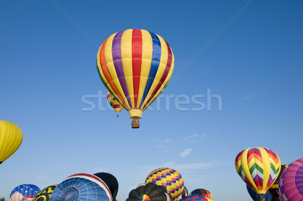 Hot-air balloons ascending over inflating ones Stock photo © Balefire9