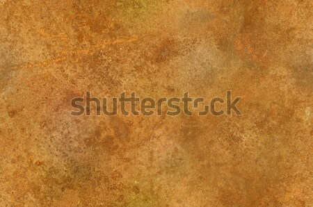 Grungy rusty surface texture seamlessly tileable Stock photo © Balefire9