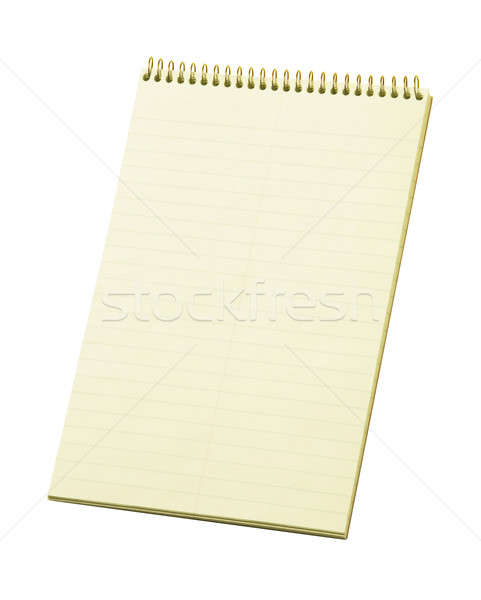 Stenographer's Lined Notepad Stock photo © Balefire9