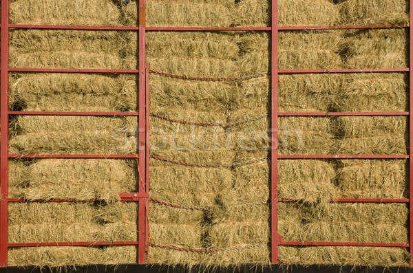 Feno carrinho vermelho metal barras grama Foto stock © Balefire9