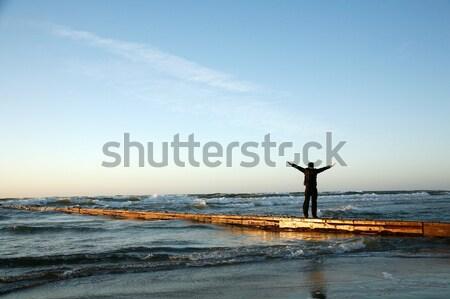 Niebieski horyzoncie szczęśliwy morza przestrzeni fali Zdjęcia stock © Bananna