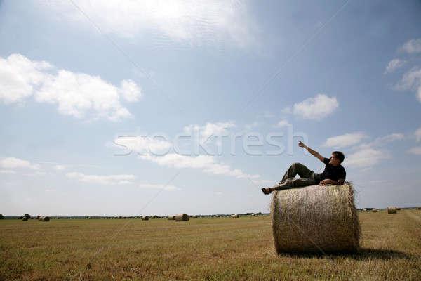 человека тюк сено области продовольствие пейзаж Сток-фото © Bananna