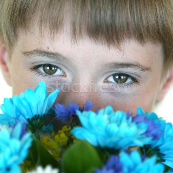 цветы Cute красивой букет Сток-фото © Bananna