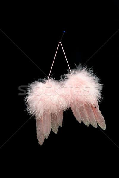 крыльями любви розовый птица Перу Рождества Сток-фото © Bananna
