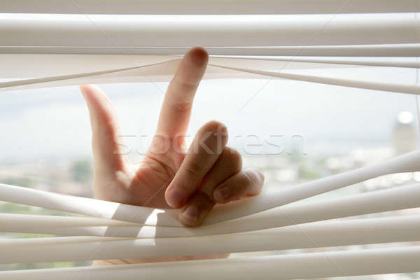 hand and blinds Stock photo © Bananna
