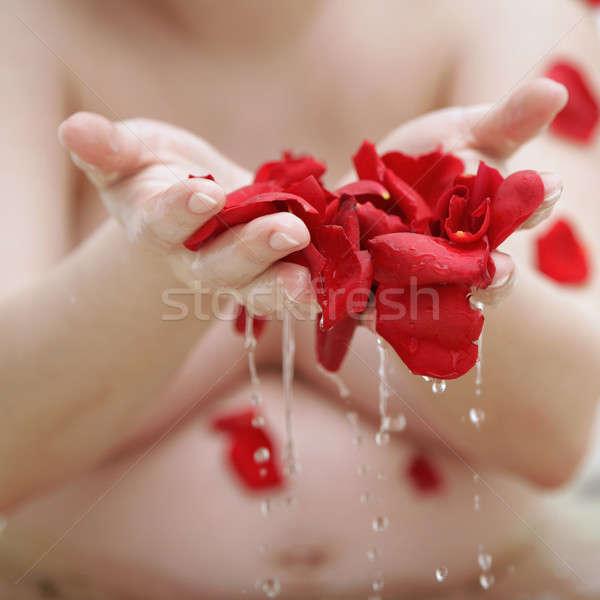 Kąpieli róż wody dziewczyna wiosną piękna Zdjęcia stock © Bananna