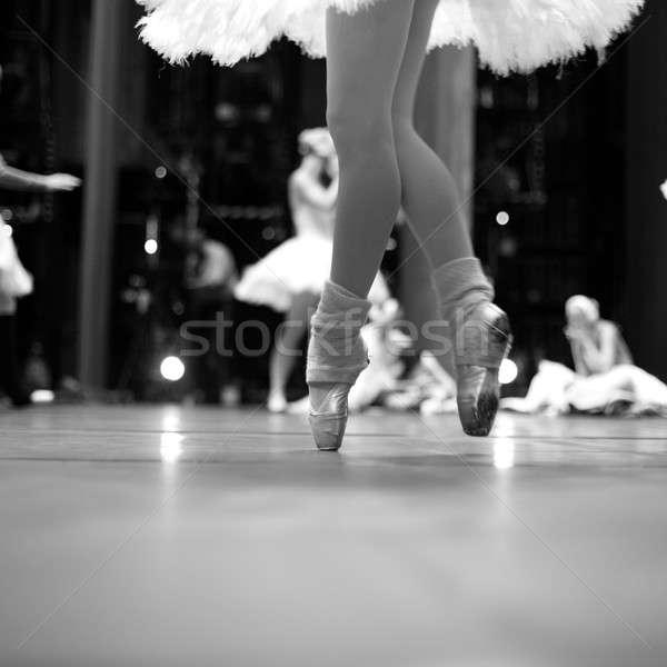 The art of ballet Stock photo © Bananna