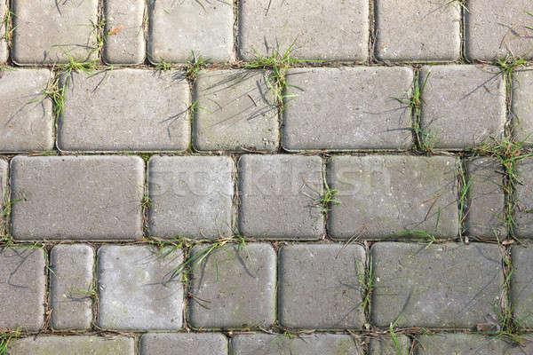 каменные трава пути зеленая трава растущий фон Сток-фото © Bananna