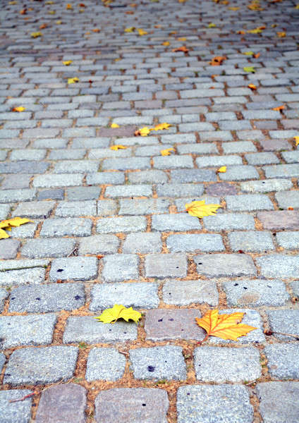 осень моста текстуры фон листьев каменные Сток-фото © Bananna