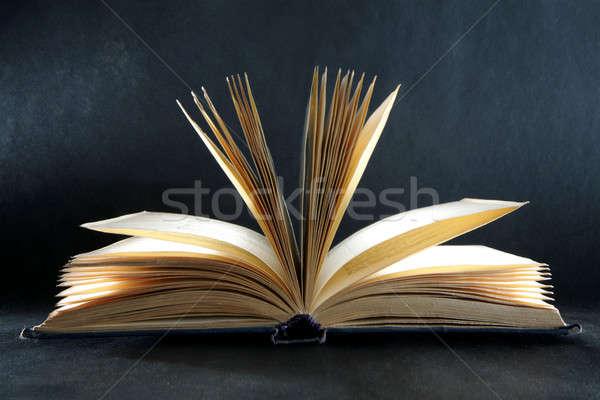 Kitap bilgi okuma kütüphane Retro Stok fotoğraf © Bananna