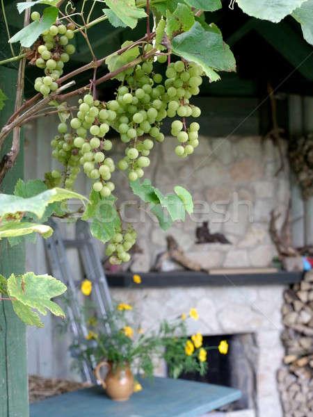 Olgun üzüm açmak teras villa iç Stok fotoğraf © Bananna