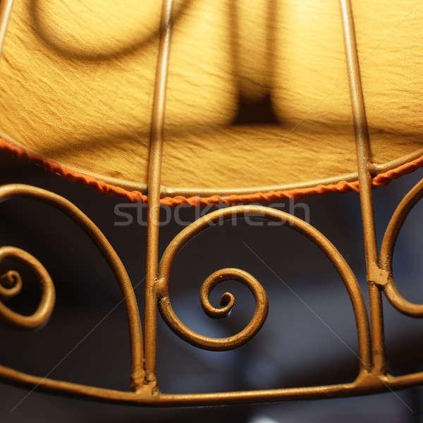 лампы дизайна освещение объект элемент темно Сток-фото © Bananna