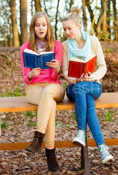 Reading is great Stock photo © barabasa
