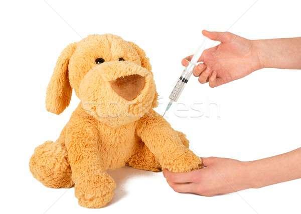 Aşı çocuk doktoru aşı oynamak köpek doktor Stok fotoğraf © barabasa