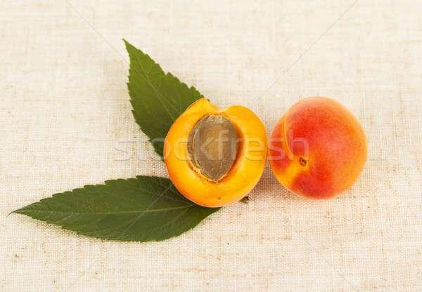 Delicious Apricot Stock photo © barabasa