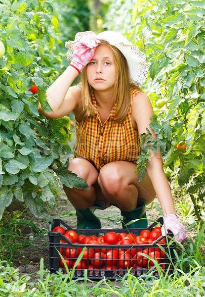 Tired of Gardening Works Stock photo © barabasa