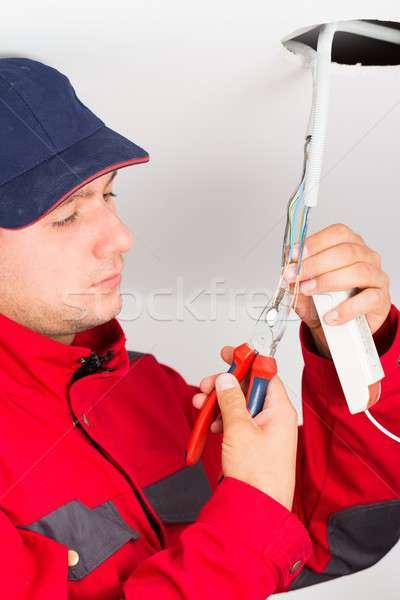 Preciso trabajo manitas nuevos eléctrica de trabajo Foto stock © barabasa