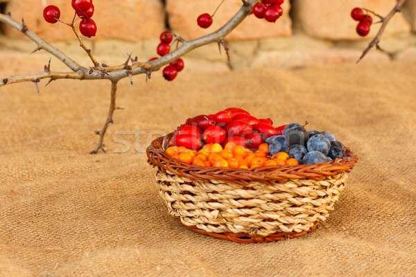 Berry fruits Stock photo © barabasa