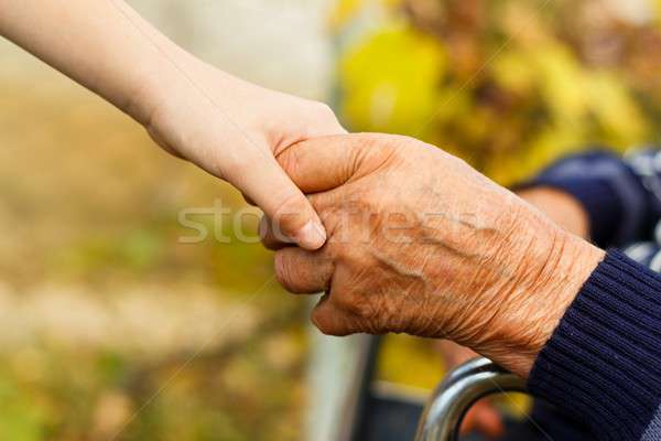 Stock photo: Handshake contrast