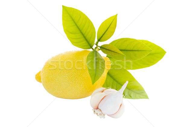 Bitkiler doğal sarımsak limon yaprak Stok fotoğraf © barabasa