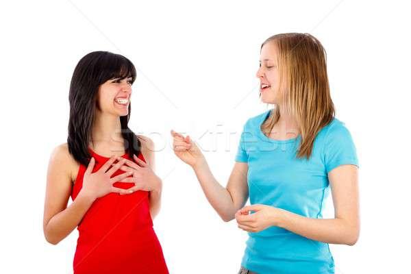 Telling a funny story Stock photo © barabasa