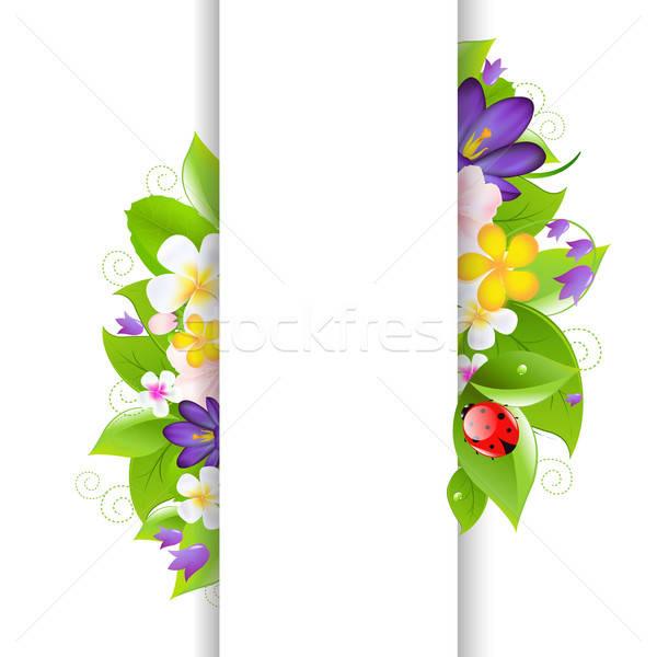 Flores joaninha papel textura folha arte Foto stock © barbaliss