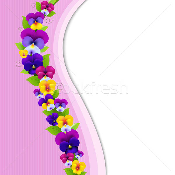 Background With Pansies Stock photo © barbaliss