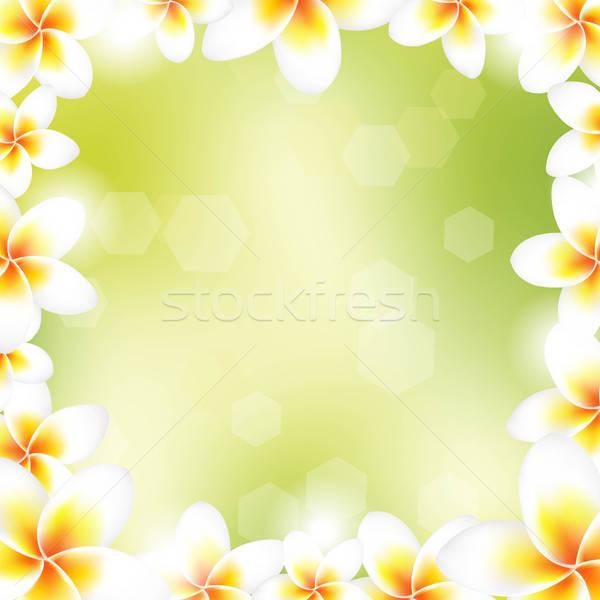Frame gradiente fiore natura spa Foto d'archivio © barbaliss