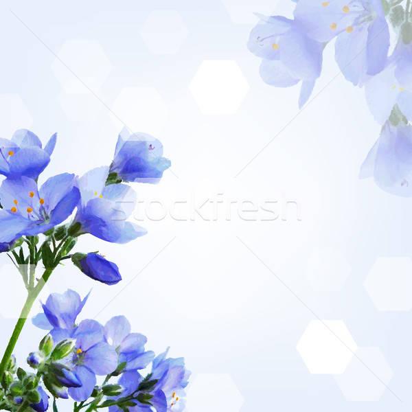 синий цветок градиент стороны природы дизайна Сток-фото © barbaliss