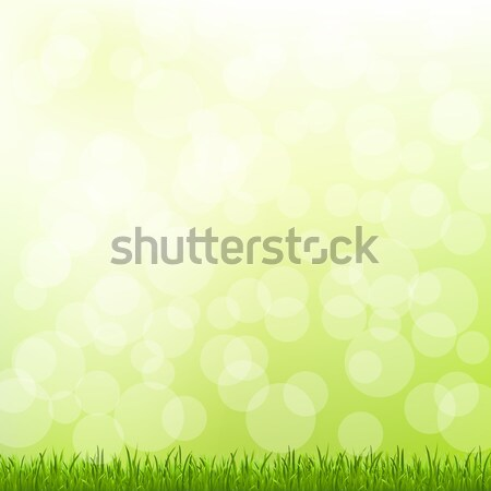 Green Grass And Bokeh Stock photo © barbaliss