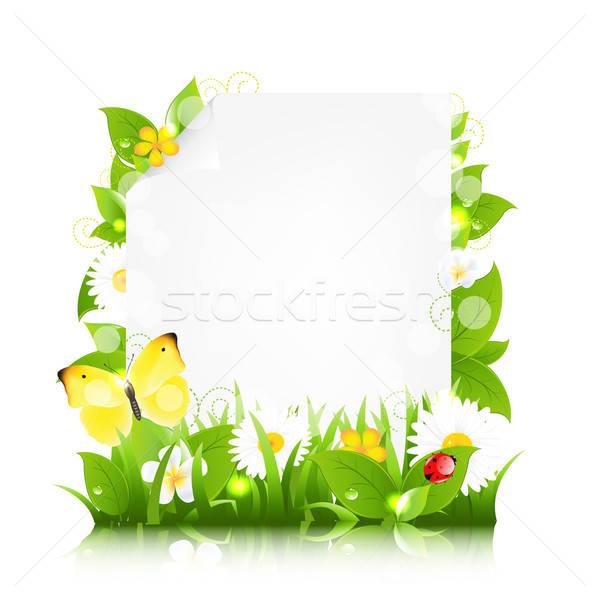 Foto stock: Papel · flores · folhas · joaninha · isolado · branco