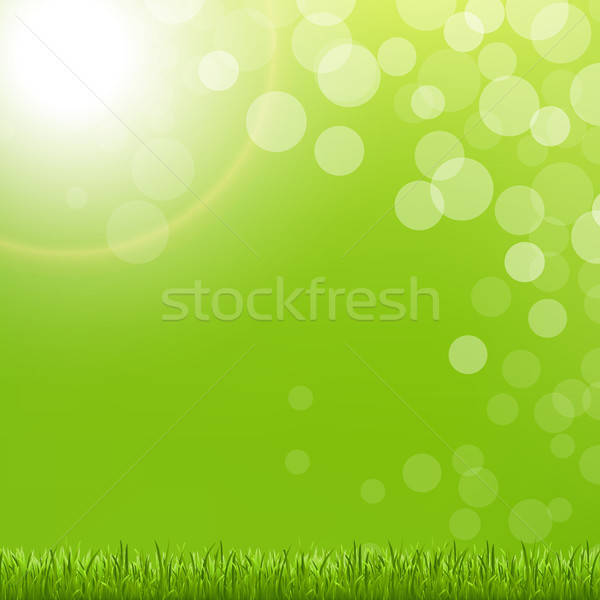 Abstract Green Bubble With Grass And Sun Stock photo © barbaliss