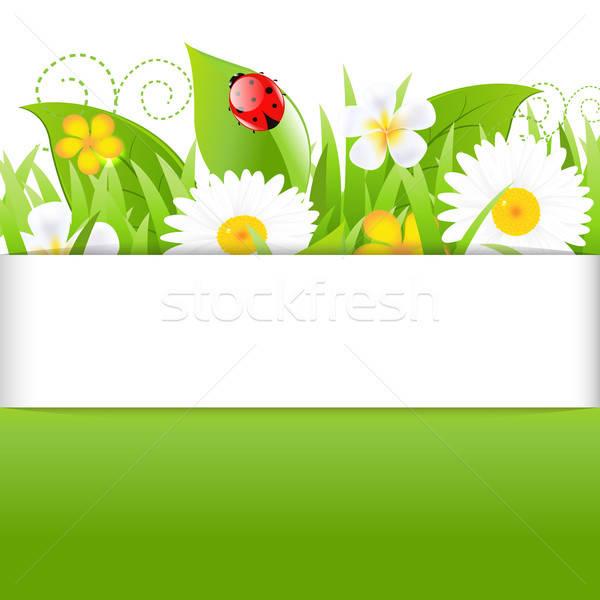 Cartaz grama joaninha isolado branco abstrato Foto stock © barbaliss