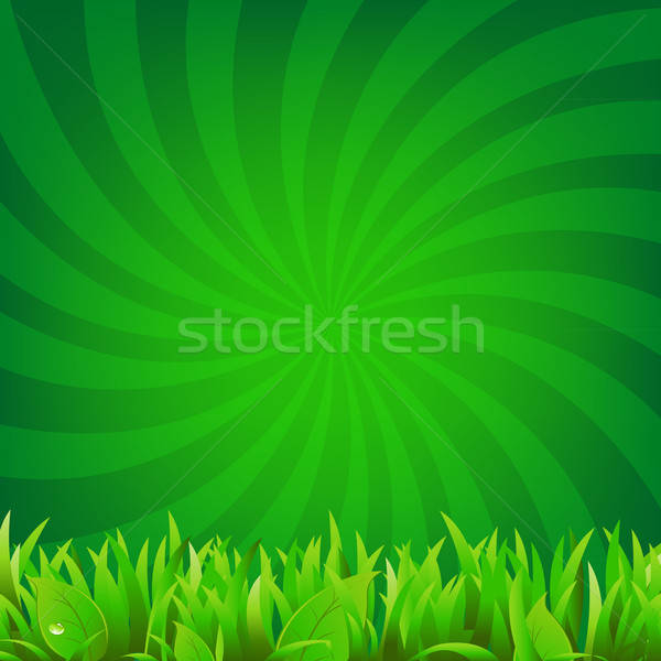 Beams And Green Grass Stock photo © barbaliss