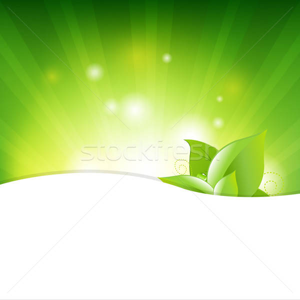 Green Background With Beams And Leaves Stock photo © barbaliss