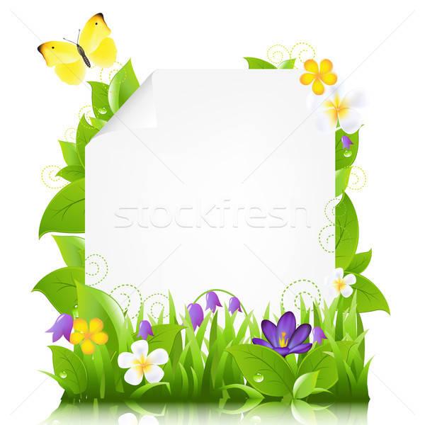 Сток-фото: бумаги · цветы · листьев · изолированный · белый · бабочка