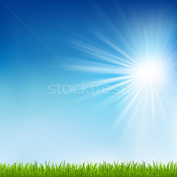 Green Grass And Sun Beam Stock photo © barbaliss