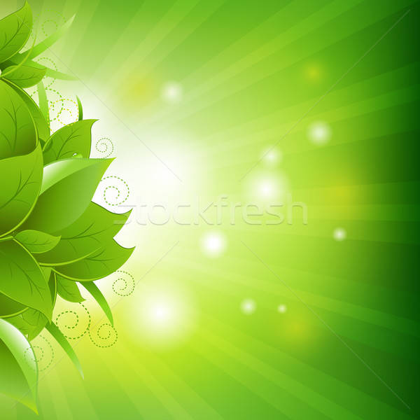 Green Poster With Leaves With Grass Stock photo © barbaliss