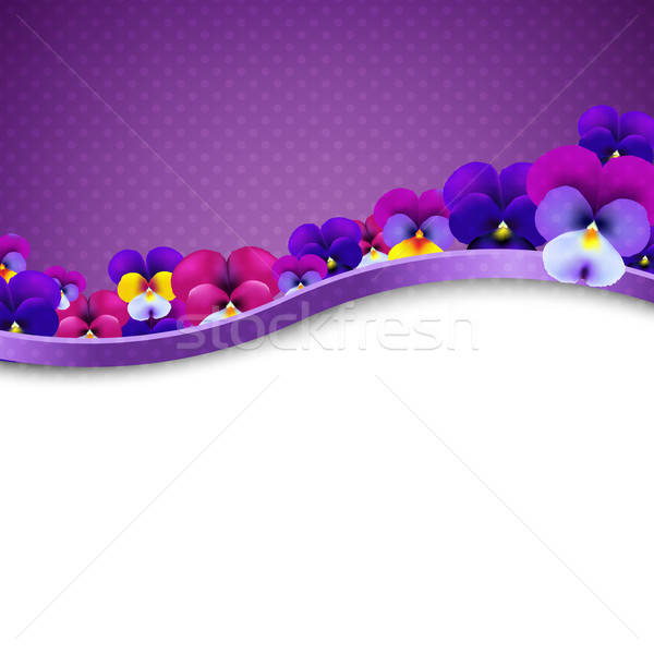 Lilac Flowers Pansies Border Stock photo © barbaliss