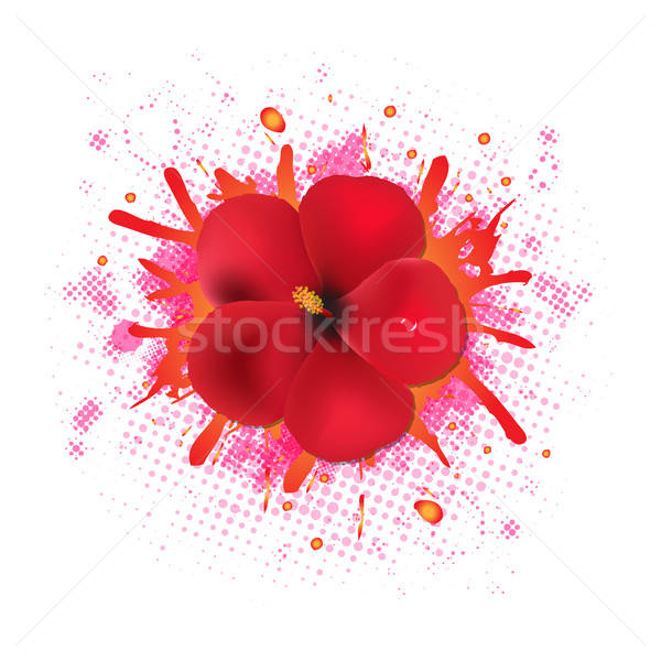 Red Hibiscus Flowers With Blob Stock photo © barbaliss