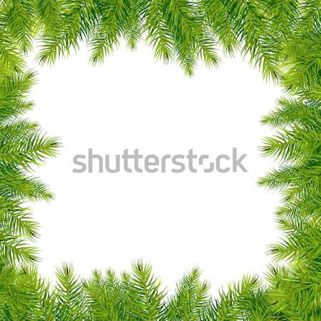árvore de natal fronteira isolado branco natureza Foto stock © barbaliss