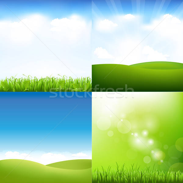 Grass And Sky Set Stock photo © barbaliss